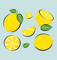 yellow lemon with leaves vector image vector image