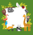 zoo animals template for banner vector image