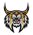 bobcat lynx wildcat angry roaring logo vector image vector image