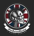 skull punk vintage emblem vector image