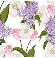 spring bouquets on white background vector image vector image