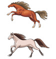 two running horses vector image vector image