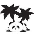 palmbear vector image