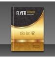 Golden background flyer template Luxury brochure vector image