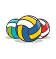 3 types of volleyball icon isolated vector image vector image