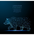 Bear low poly wireframe blue vector image vector image