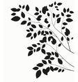 Beautiful Tree Silhouette on a White Background vector image vector image