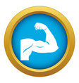 biceps icon blue isolated vector image vector image