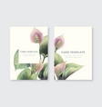 calla flowers greeting card vector image vector image