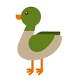duck farm isolated icon design vector image
