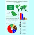 saudi arabia infographics for presentation all vector image vector image