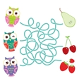 set bright colorful owls with pear cherry vector image vector image