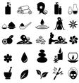 Spa icon set vector image vector image