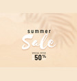 summer sale background with palm leaf vector image
