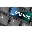 organic word on green keyboard button vector image