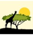 Acacia tree and giraffe silhouette concept design vector image vector image