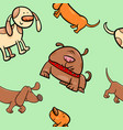 cartoon wrapping paper with dogs vector image vector image