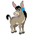 cute donkey with flower vector image