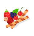decor for food such as fruit berry nut cookie vector image vector image