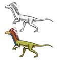 dinosaurs deinonychus skeletons fossils vector image vector image