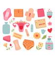 female hygiene menstruation tools women sanitary vector image