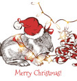greeting card with cute hare in santa hat vector image vector image