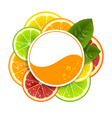 Round Banner with Citrus Fruits vector image vector image