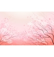 Sakura branch spring floral background vector image
