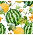 Watercolor watermelon melon pattern vector image vector image