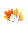 book and autumn leaves flat vector image
