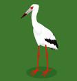 maguari stork cartoon bird vector image vector image
