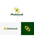 photo leaf logo icon vector image vector image