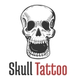 skeleton skull with wide opened mouth tattoo vector image