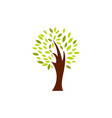 tree icon design template isolated vector image vector image