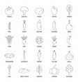 vegetables icons set outline style vector image vector image