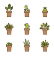 House plants in flowerpots Set of flat line icons vector image
