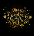 merry christmas and happy new year hand- drawn vector image vector image