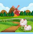 sheep on a path near a farm vector image