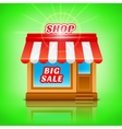 Shop icon Big sale vector image vector image