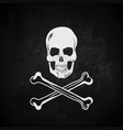 Pirate flag Skull with crossed bones vector image