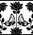 design element flourishes butterflies vintage vector image