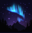 northern lights isolated aurora borealis bright vector image