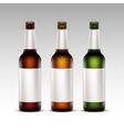 Set of Bottles Dark Beer with White labels vector image vector image