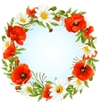 camomile and poppy frame vector image