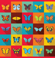 butterfly icons set flat style vector image vector image