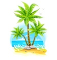 Coconut palm trees at tropical vector image