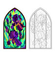 colorful and black and white pattern gothic vector image