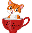 cute cat sitting in a red cup vector image vector image
