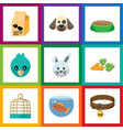 flat icon pets set of nutrition box bunny bird vector image vector image