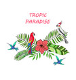 hand drawn tropical leaves vector image vector image